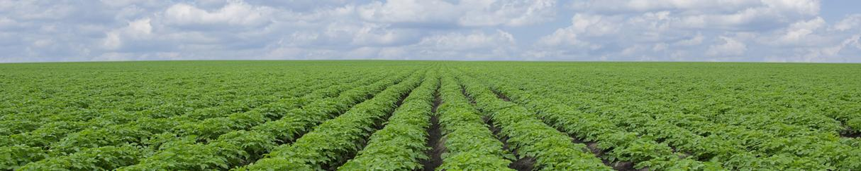 Agriculture irrigation vortex water treatment