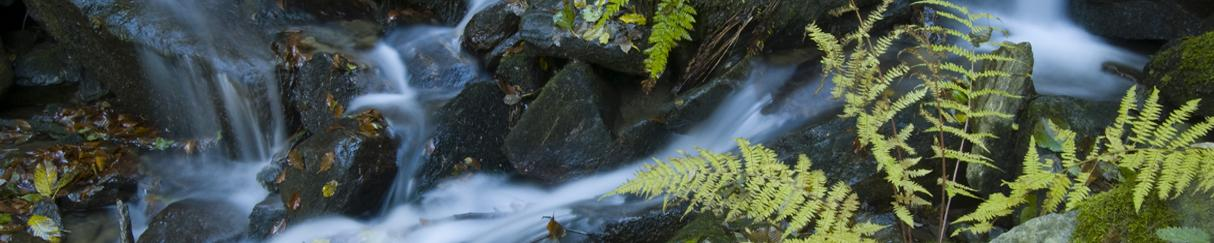 World Living Water Systems Blog